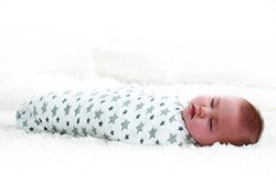 Aden + Anais 100% Cotton Muslin Swaddle Twinkle - 4 Count
