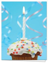 Note Card Cafe Blank Birthday Cards in 6 Different Designs - Pack of 144