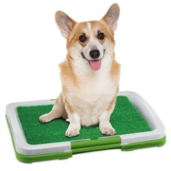 Total Vision Puppy Potty Trainer Indoor Grass Training Patch Pad