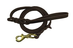 Premier 6ft Leather Dog Training Leash. Made from Leather and is a Great Option for Hunting Dogs or General Obedience in the Backyard.