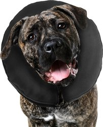 ZenPet ProCollar Pet E Collar for Dogs & Cats - Size: XXL