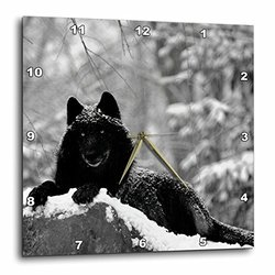 Rocky Mountain Wolf - Black White (dpp_100280_2)