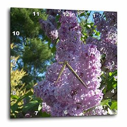 Lovely Large Lilacs-Wall Clock - 15 by 15-Inch