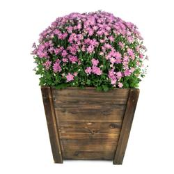 Pennington 16-inch Dark Flame Wood Tapered Planter
