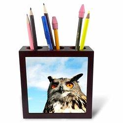 """ph_219740_1 Eagle Owl Bubo in Spain Tile Pen Holder, 5"""""""