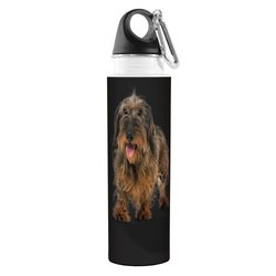 Tree-Free Greetings VB49039 I Heart Wire Haired Dachshunds Artful Traveler Stainless Water Bottle, 18-Ounce