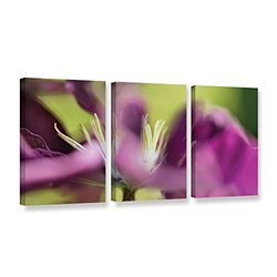 18in H X 36in W Clematis Panorama by Cora Niele - 3 Pieces