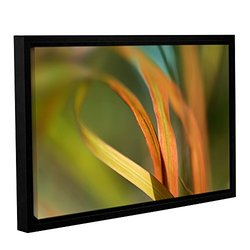 "ArtWall 16""x24"" Cora Niele's Autumn Grass Gallery Wrapped Framed Canvas"
