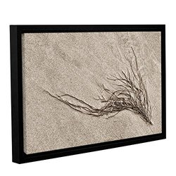 """Cora Niele's Beach Find I Gallery Wrapped Floater Framed Canvas 12"""" x 18"""""""