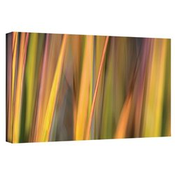 "ArtWall Cora Niele's Vivid Green Gallery Wrapped Canvas - 12"" X 24"""