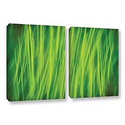 ArtWall Cora Niele's Hordeum 2 Piece Gallery Wrapped Canvas Set, 18 by 28""