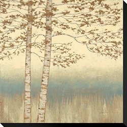 "Birch Silhouette 1 by James Wiens Stretched Canvas Print - 22"" x 22"""