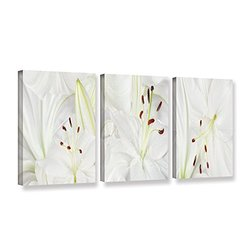 ArtWall Cora Niele's Lily Landscape 3 Piece Gallery Wrapped Canvas Set, 18 by 36""