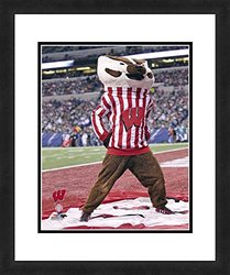 """NCAA Wisconsin Badgers Mascot, Beautifully Framed and Double Matted, 18"""" x 22"""" Sports Photograph"""