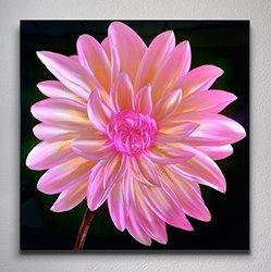 Metal Artscape Petals in the Dark - Pink