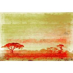 "18""x12"" Africa Canvas Artwork by Parvez Taj"