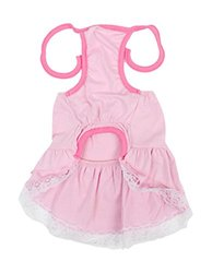 Uxcell Flower Detail Dog Self Tie Neck Strap Lace Tiered Halter Dress, Small, Pink