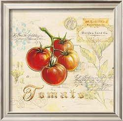 "Tuscan Tomato by Angela Staehling Framed Art Print- 17 x 17"" - Red"