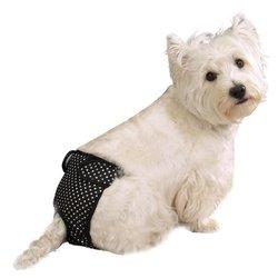 ClearQuest Female Pup Pant, X-Large, Polka Dot, Black