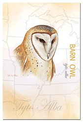Tree-Free Greetings EcoNotes 12-Count Notecard Set with Envelopes, 4 x 6 Inches, Barn Owl (66272)