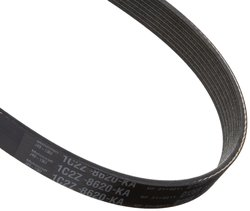 Motorcraft Resists Stretching V Ribbed Belt