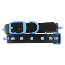 Platinum Pets 15-Inch Genuine Black Leather Collar with Spikes, Medium, Sky Blue