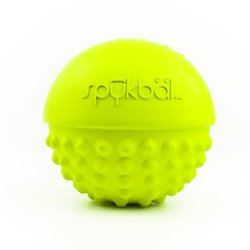 petprojekt Small Spykbal Dog Toy, Green