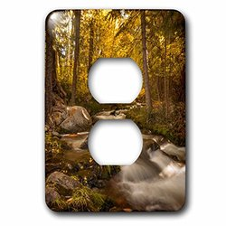 lsp_208283_6 USA, Colorado. Autumn Colors on Crestone Creek. 2 Plug Outlet Cover