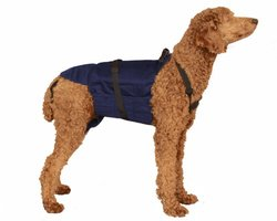 Dog Diaper Wrap LARGE BLUE