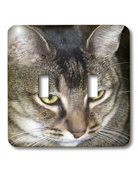 lsp_19181_2 Maine Coon Double Toggle Switch