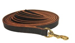 Dean & Tyler 40-Feet Stitched Track Dog Leash with Handle - Brown