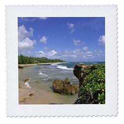 qs_89688_4 Gillins Beach, Mahaulepu, Kauai, Hawaii US12 DPB1199 Douglas Peebles Quilt Square, 12 by 12""
