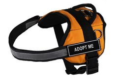 "Dean & Tyler ""Adopt Me"" Dog Harness - Orange/Black - Size: Small"