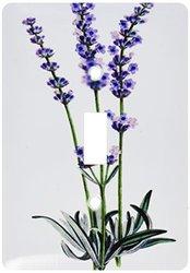 3dRose lsp_163398_1 Image of Vintage Lavender Plant - Single Toggle Switch