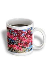 3dRose Pink Dogwood Flowers - Ceramic Mug, 11-Ounce (mug_183251_1)