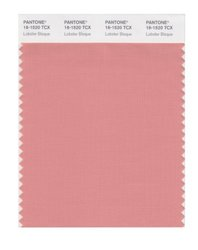PANTONE SMART 16-1520X Color Swatch Card - Lobster Bisque