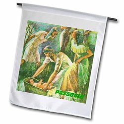 3dRose fl_37410_1 Moses in Basket Passover Scene Garden Flag, 12 by 18-Inch