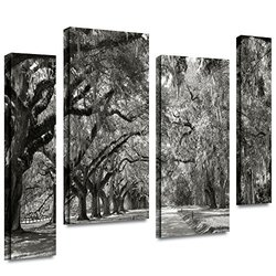 24in H X 36in W Live Oak Avenue by Steve Ainsworth - 4 Pieces