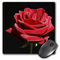 "3dRose 8""x8"" Mouse Pad - Irresistible Red Rose"