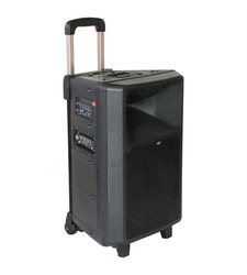Audio2000 Portable Wireless PA System with Rechargeable Batteries