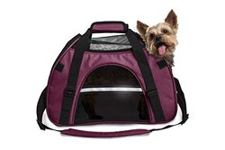 Pet Tote With Weather Guard: Small/raspberry