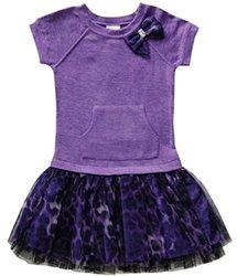 Youngland Little Toddler Girls Knit Drop Waist Dress - Purple - Size: 2T
