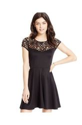 Trixxi Women's Laser Cut Cap Sleeve Skater Dress - Black - Size: 5