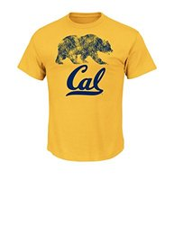 California Golden Bears Men's Short Sleeve T-Shirt - Gold - Size: XXL