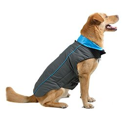 """Dog Gone Smart Trailblazer Jacket with Repelz-It Nano-Protection Coat for Dogs, 8"""", Grey with Teal"""