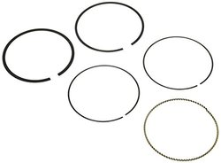 Hastings 2C5219S Piston Ring Set