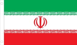 Allied Flag Outdoor Nylon Iran United Nation Flag, 4 by 6-Feet