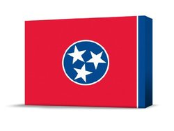 Finest Flags State Premium Canvas Art, 14 by 20-Inch, Tennessee