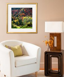 Art.com Autumn Erupting by Philippe Sainte-Laudy Framed Photographic