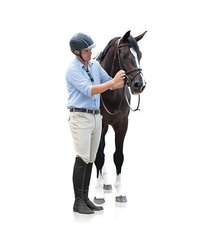 Ovation Men's Euroweave Knee Patch Breeches Black 30 R US